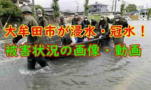 大牟田市被害状況