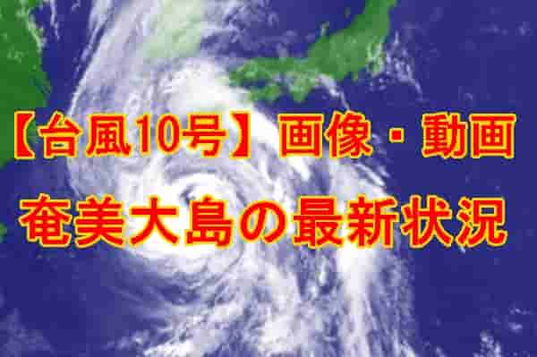 奄美大島台風10号